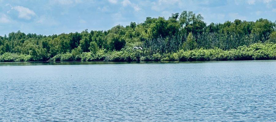 a top tourist spot for Bossier Parish